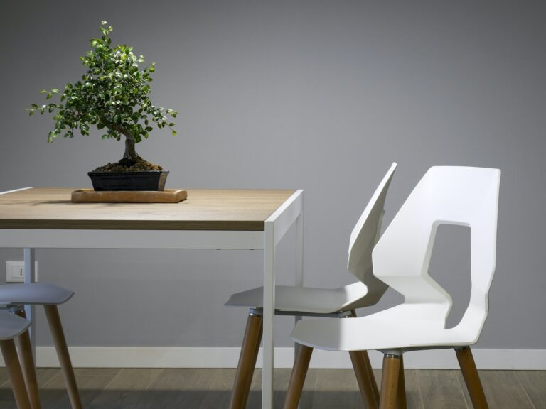 Bonsai tree on a table with a plain grey painted wall behind